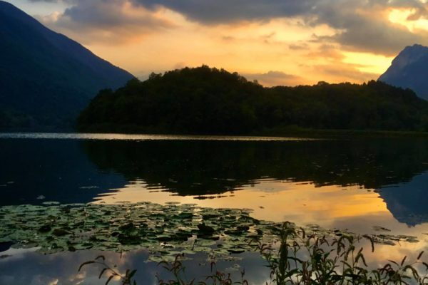Lago x art